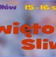 18. święto śliwki, Szydłów 15-16 sierpnia 2015 r.